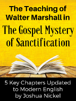 TheGospelMysteryOfSanctification